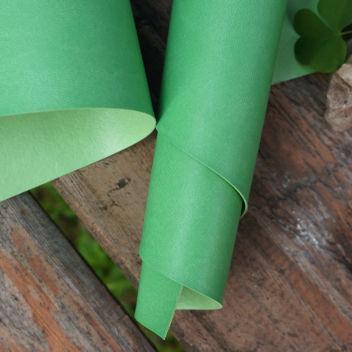 Светло-зелёный переплетный кожзаменитель