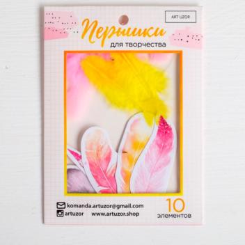 Пёрышки для творчества «В стране единорогов», 10.3 × 14.3 см