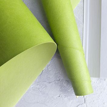 Фисташково-зеленый переплетный кожзаменитель