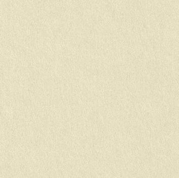 Кардсток матовый Серо-бежевый 30х20см (плотность 270г)