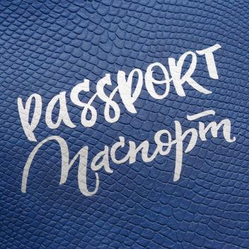 """Набор надписей из термотрансфера """"Паспорта №1"""" - матовое серебро"""